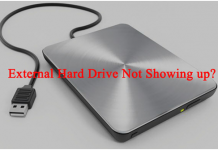 How to Fix External Hard Drive not Showing on Windows
